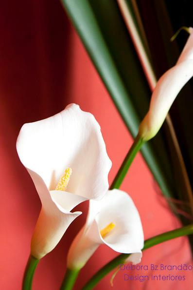 Débora Bz Brandão Design Interiores Flores